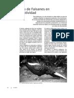 CRIA DE FAISANES EN CAUTIVIDAD.pdf