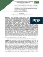 Niveis de Ruido Do Conjunto Trator Semeadora Na Operação de Semeadura
