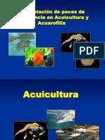 Alimentación de peces de importancia en Acuicultura y Acuarofilia