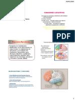 77322825.FUNCIONES EJECUTIVAS CC.pdf