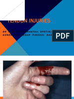54330_Tendon injuries.ppt..ppt