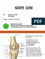 Anatomi Genu