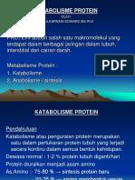 metabolisme-protein.ppt
