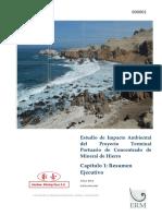 Capitulo 1 - Resumen Ejecutivo Proyecto portuario