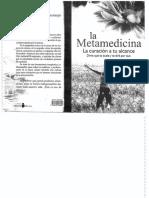 Claudia Rainville La Metamedicina