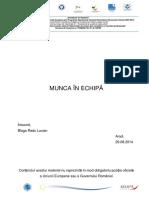 Munca in echipa.pdf