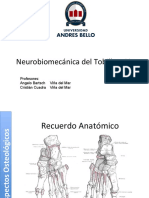 8.- Biomecanica de Tobillo y Pie