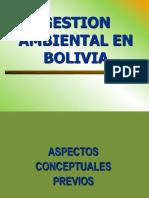 Gestión Ambiental en Bolivia