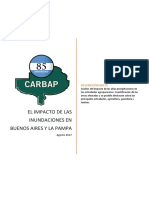 Informe de Carbap sobre inundaciones