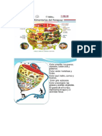 Canasta básica de alimentos.docx