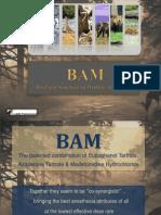 BAM-Deer Immobilization Protocol