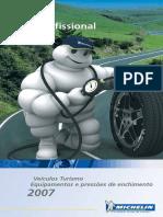 Guia Do Profissional Turismo Michelin 2007 PT