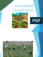 Multifuncionalidad de La Agricultura