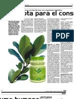 Hoja de Coca No Apta Consumo Humano Jornada Info Region