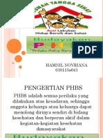 Presentation1 PHBS.pptx
