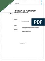 Liderazgo Estratégico y Océano Azul-Guevara Dávila Jhana