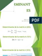 Determinantes Clase 15