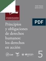 Principios y Obligaciones de Derechos Humanos-SCJN
