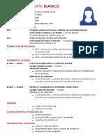 curriculum-profesor-primaria.docx