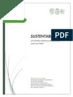 Ensayo Sustentabilidad_Eduardo Gómez.pdf
