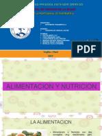 Almentacion y Nutricion.pptx