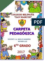 CARPETA PEDAGOGICA 6_ 2017.docx