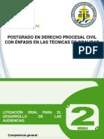 2 Configuración Del Proceso Civil Final