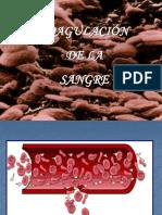 Coagulacin de La Sangre