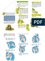 leafflat pmdk PHBS