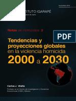 Homicidios 2000-2030