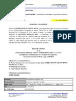 20170830 Raport de Activitate Nr 11 CARSYSTEM Romania