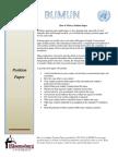 PositionPaper (1)