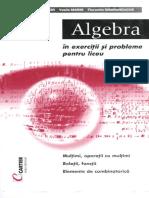 AlgebraRomanian.pdf