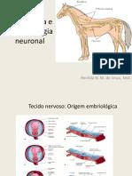 Tecido Nervoso Completo MED VET