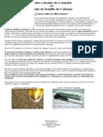 Aceite de Cannabis o Extracto vs Aceite de Semilla de Cáñamo