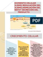 clase 3 biotecnología.pptx