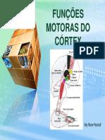 cortex_motor.pdf