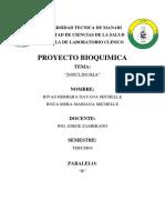 B Rivas Dayana Roca Mariana.docx