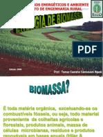 Ler 244 Energia Biomassa Palhiço Aula 3