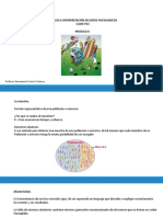 Analisis Estadistico Psicologia