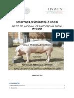 Anexo 8b_estudio de Inversion Cria y Engorda de Cerdos