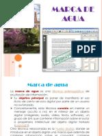 Marca de Agua Y Firma Electrónica.pptx