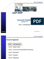 SAP Accounts Payable Introduction Info