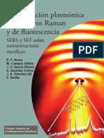 Amplificación Plasmónica de Espectros Raman