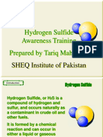 SHEQ H2S Training