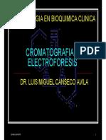 Cromatografia y Electroforesis