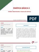 UNIDAD 2 Determinantes Rango e Inversa de Matrices