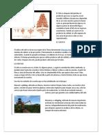 ACTIVIDAD DIFICIL.docx