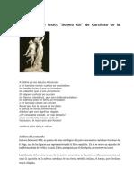 Comentario Garcilaso..pdf