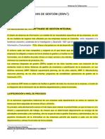 Sistemas Integrados de Gestion (Erps)